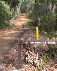 Old Timberline and Sidings Rail Trails