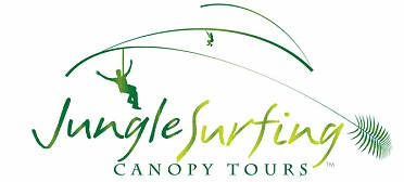 Jungle Surfing Canopy Tours and Jungle Adventures Nightwalks - Accommodation Noosa