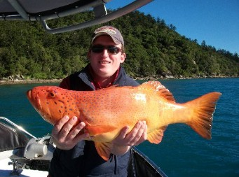 Gone Fishing by Coral Sea Fishing Charters Airlie Beach - Accommodation Noosa