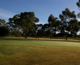 Winchelsea Golf Club - Accommodation Noosa