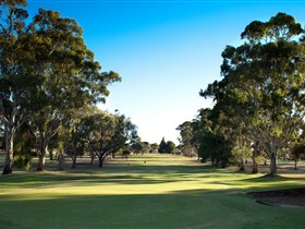 Loxton Golf Club - Accommodation Noosa