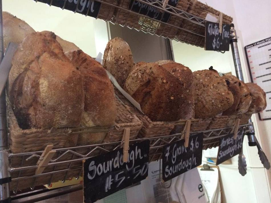 Harvest Breads Cafe - Accommodation Noosa