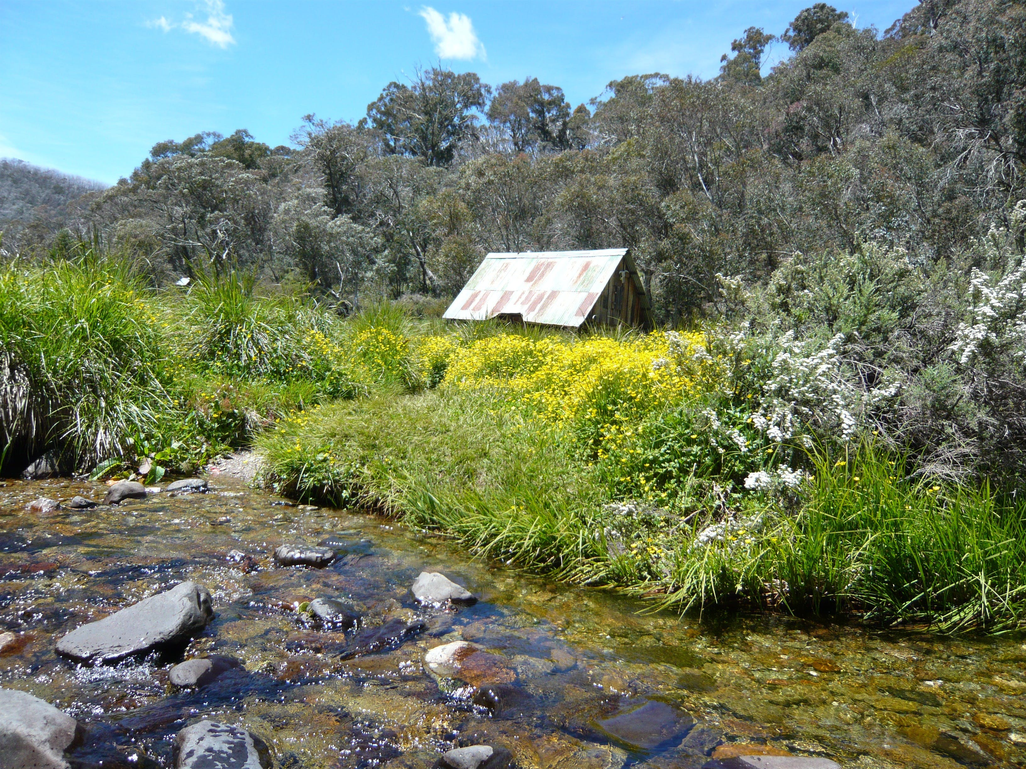 Hedonistic Hiking's Falls Creek to Hotham - Accommodation Noosa