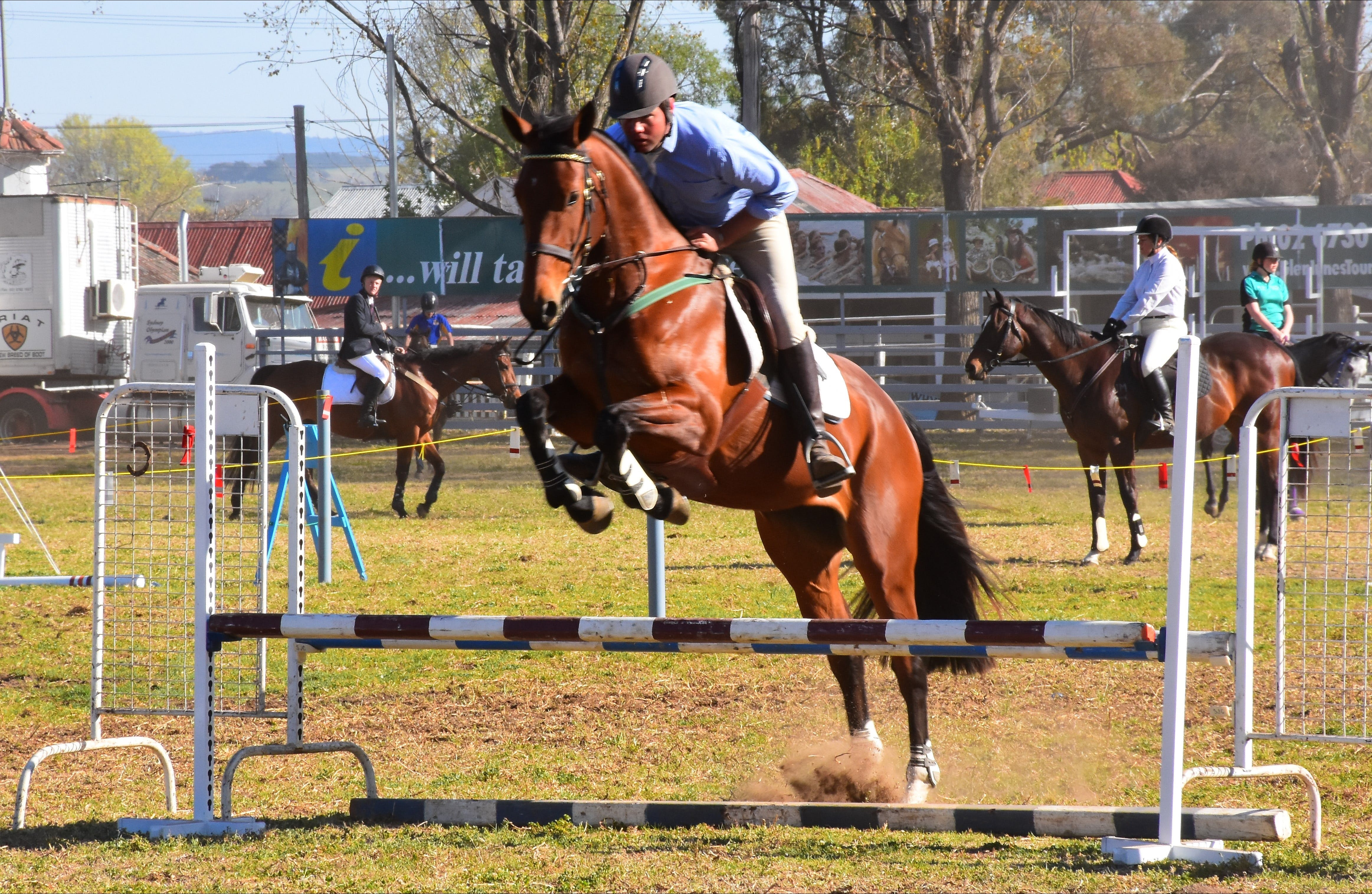 Glen Innes Pastoral and Agricultural Show - Accommodation Noosa