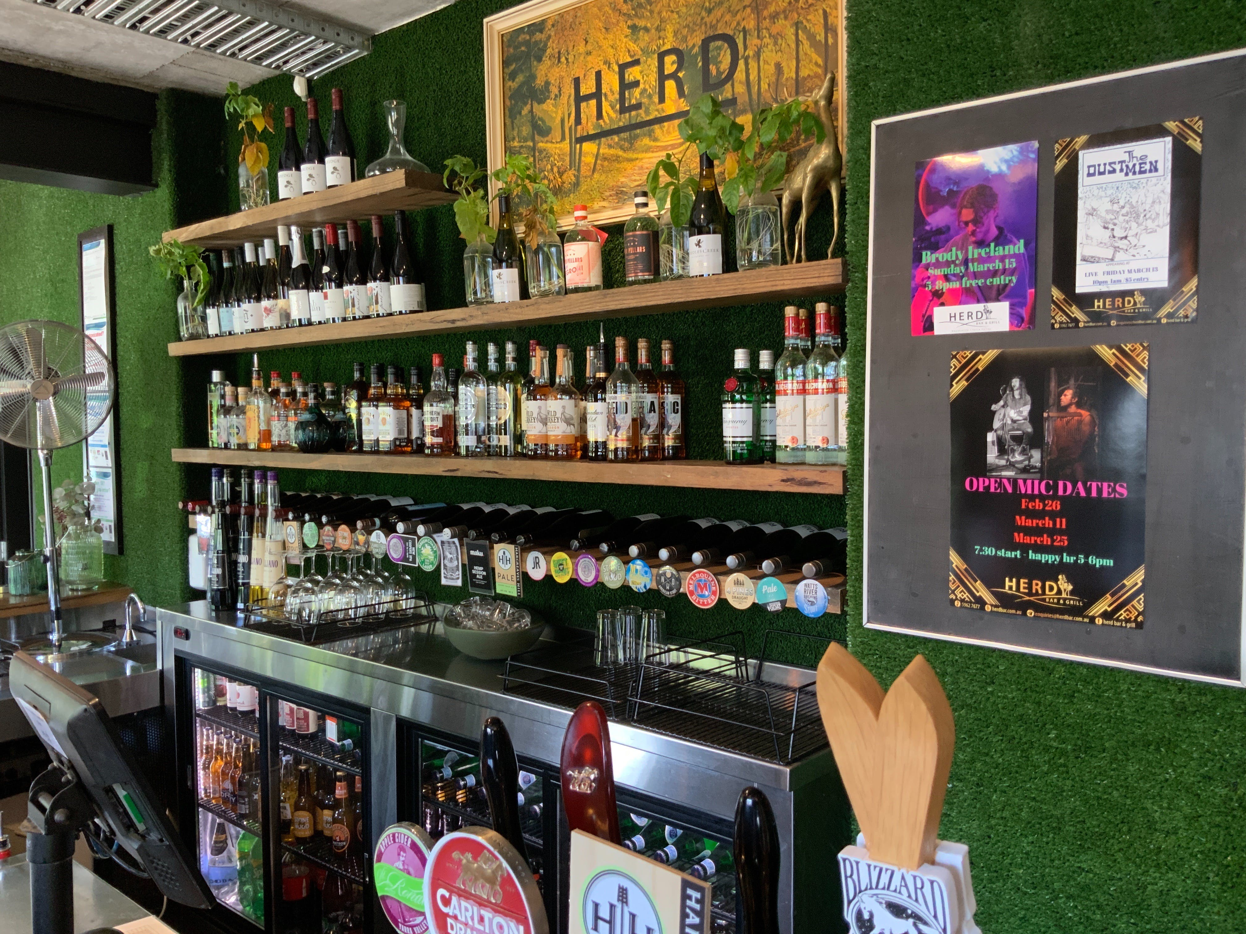 Open Mic at Herd Bar and Grill - Accommodation Noosa