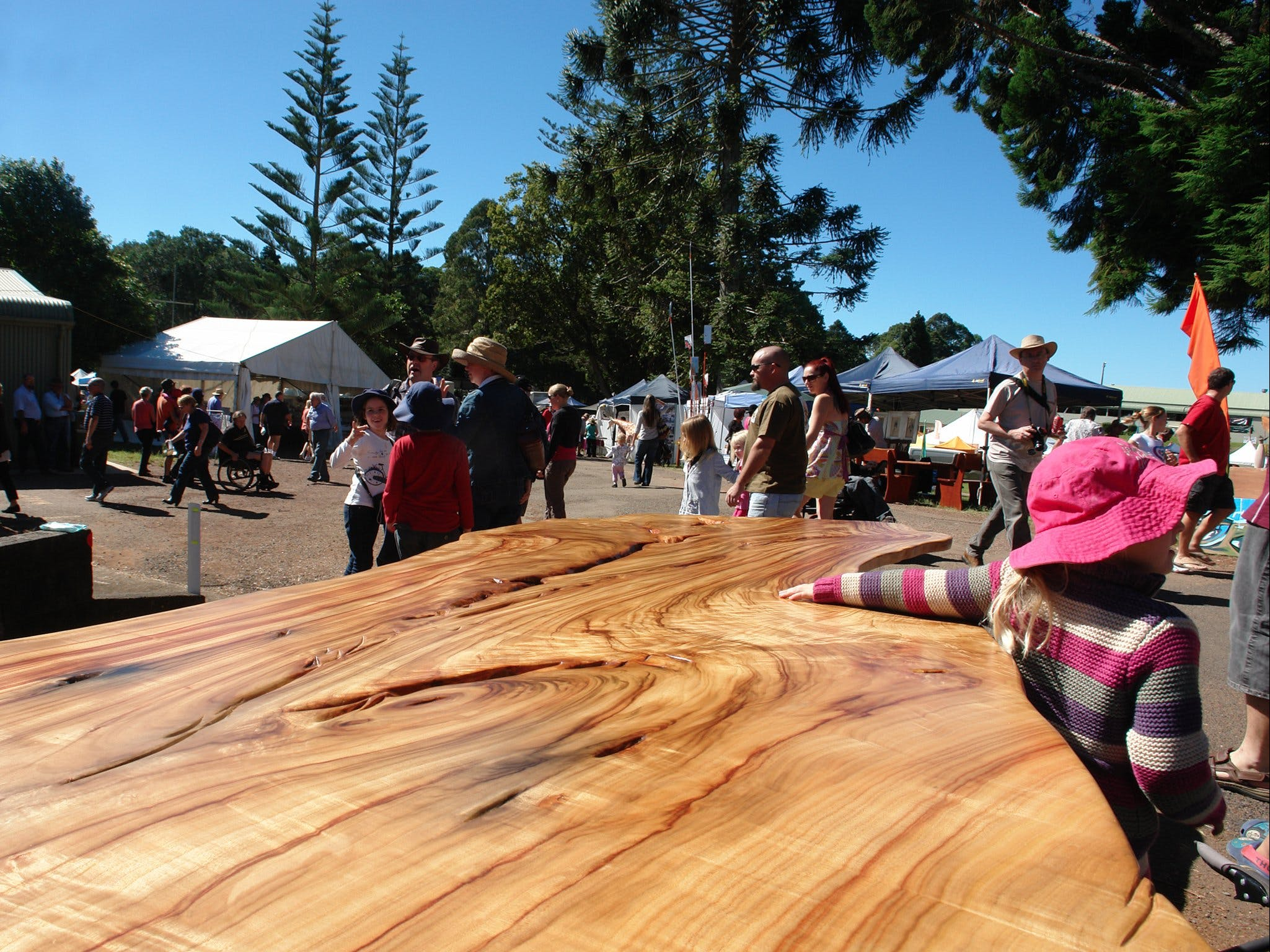 Maleny Wood Expo From Seed to Fine Furniture - Accommodation Noosa