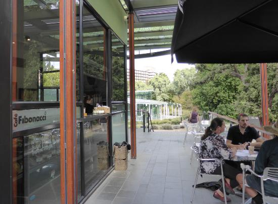 Cafe Fibonacci - Accommodation Noosa