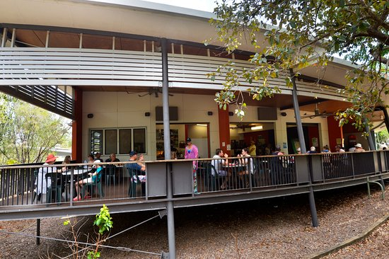Wangi Falls Cafe - Accommodation Noosa