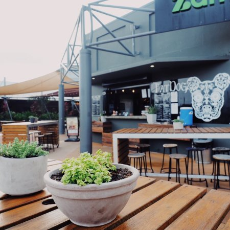Fat Dogz - Accommodation Noosa