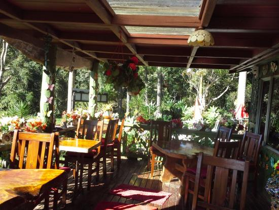 Suzannes's Hideaway Cafe - Accommodation Noosa