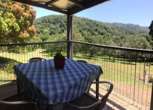 Terania Creek Farmstay - Accommodation Noosa